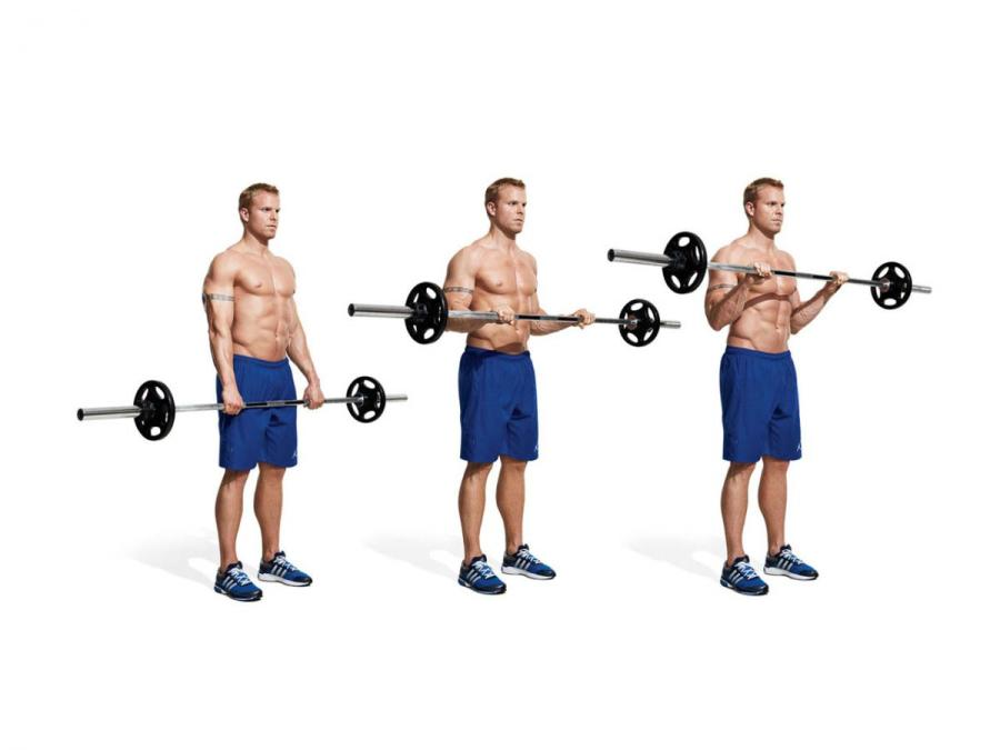 Overhand Barbell Biceps Curl