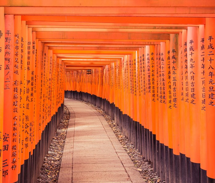 Footpath Amidst Orange Torii Gates With Chinese Script