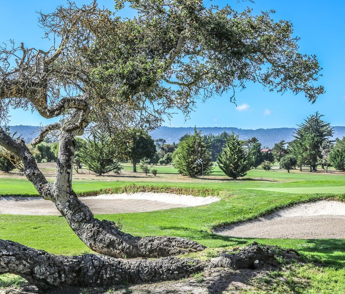 The 16th Hole at Del Monte golf course