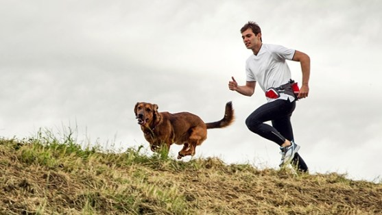 8 Reasons You Should Go Running With Your Dog