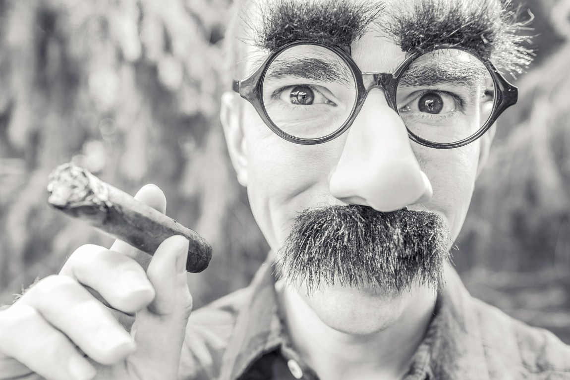 Man with Groucho Glasses and Cigar