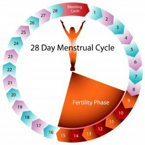 menstrual cycle diagram with ovulation wu tang clan 8 diagrams the basics of menstruation for you note these facts
