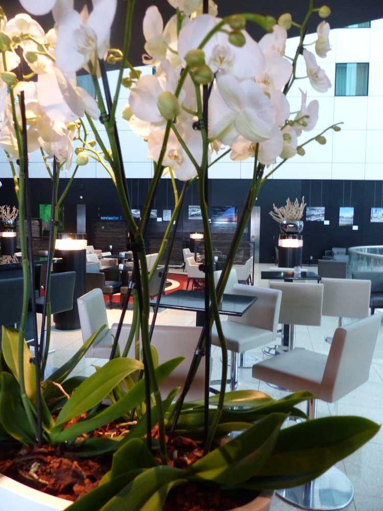 Sheraton Amsterdam Airport Hotel MenStyleFashion 2016 (14)