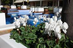 alva-park-resort-spa-menstylefashion-2016-5