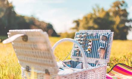 Picnic Date – How To Impress Your Date?