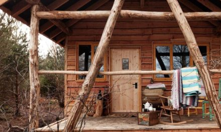 Swinton Bivouac  – Glamping In Woodland Yorkshire