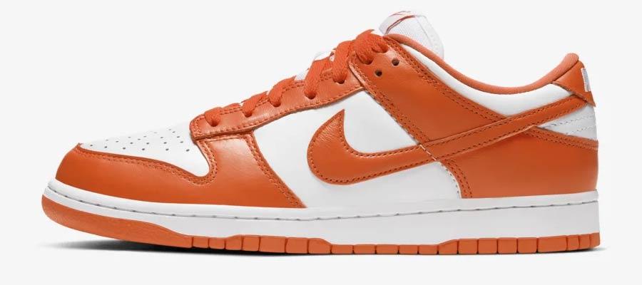 Nike Dunk sneaker