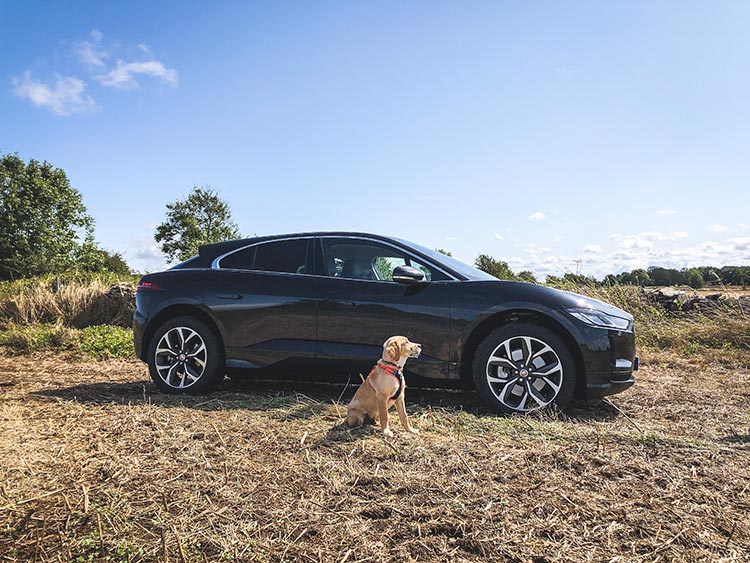 Jaguar IPACE – Electric Car Technology Reviewed