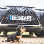 Lexus UX250h F Sport – Hybrid Reviewed?