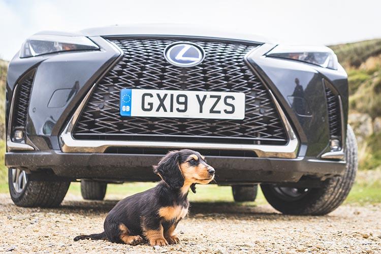 Lexus UX250h F Sport – Hybrid Reviewed?