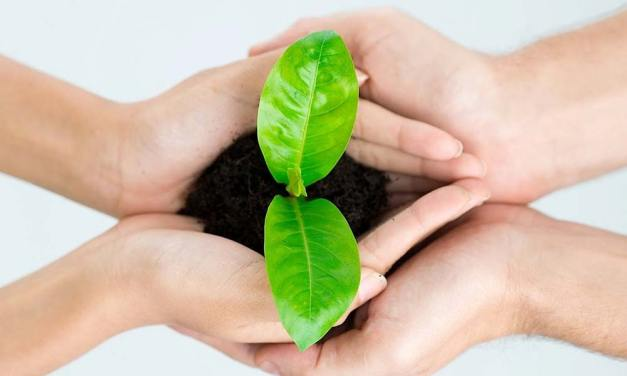 Simple Habits For Sustainable Living