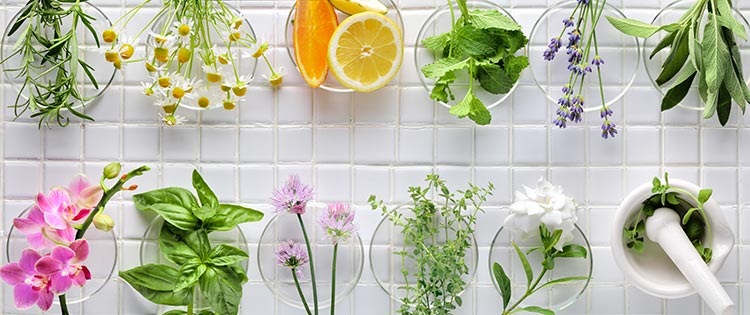 How To Use Different Kinds Of Oil To Keep Your Skin Healthy