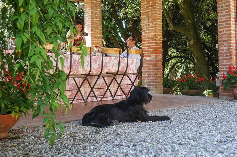 Fattoria Mansi Bernardo outdoor eating (4)