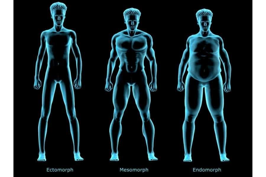 Body Type men