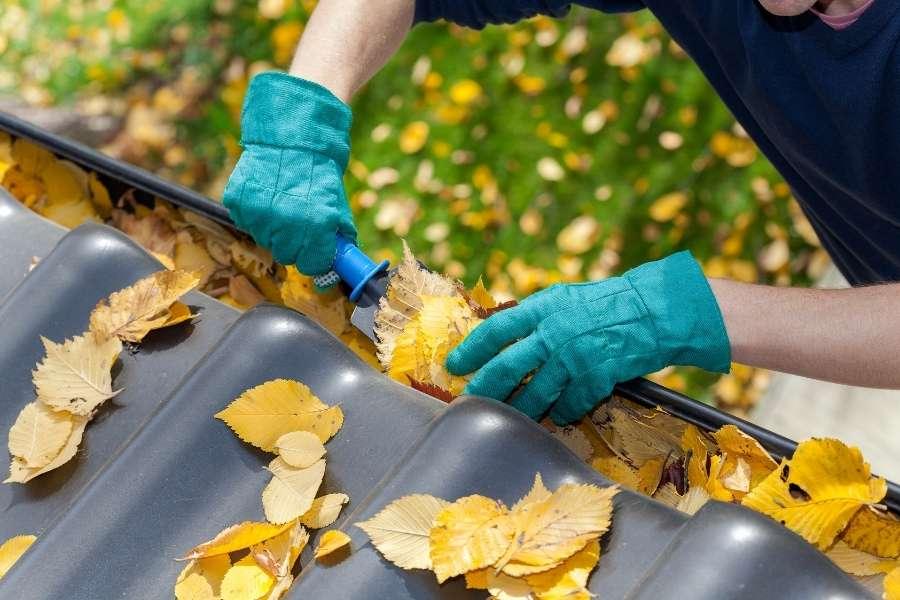 Leaves gutter