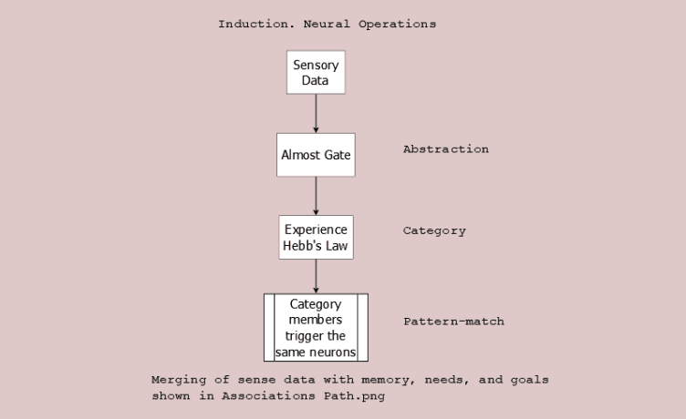Induction, neural operations