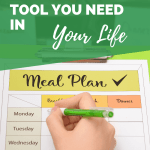 Scientific meal planner pin image A