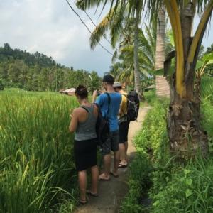 Das muss fotografiert werden! Carolin, Dom & Arvid versuchen, die magische Kraft der Reisfelder zu fotografieren.