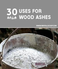 30 Uses for Wood Ashes - Mental Scoop