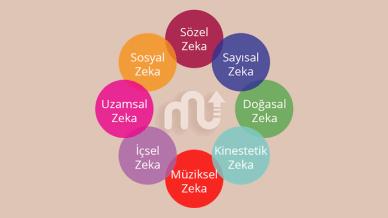 Çoklu Zeka Kuramı ve Zeka Türleri | MentalUP