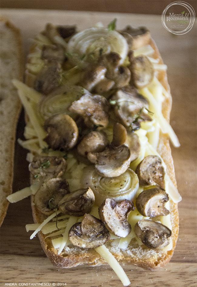 sandwich-cald-cu-branza