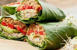 proteina vegetal animal