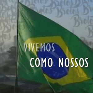 Sete dias de guilhotina – Brasil morrendo aos poucos
