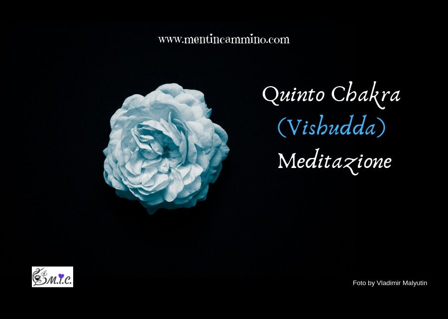 Quinto Chakra Vishudda