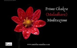 Primo Chakra Muladhara Meditazione