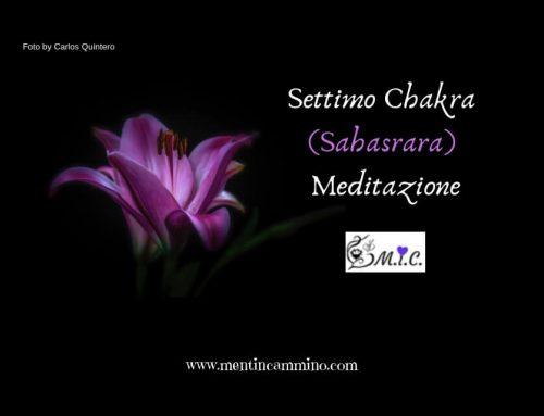 Settimo Chakra meditazione