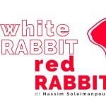 White Rabbit Red Rabbit, una nuova stagione diffusa sulla Città di Napoli: i dettagli