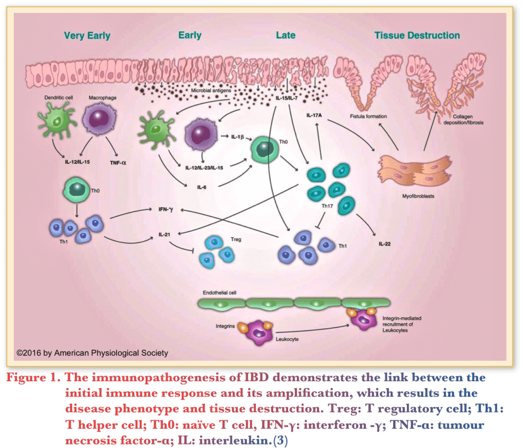 hight resolution of new therapeutic approaches