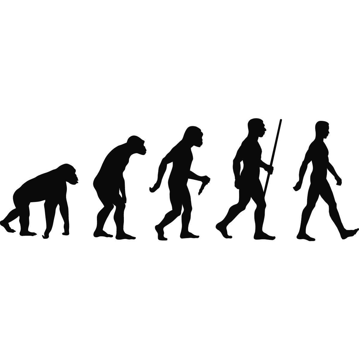 The Evolution of Brand Marketing: Branding Goes Social