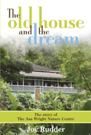 The Old House and the Dream by Joy Rudder