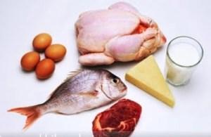 et-sut-balik-yumurta-peynir[1]