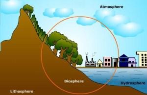 biyosfer nedir