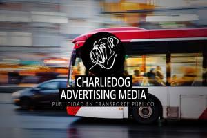 Charliedog lleva la publicidad hasta el interior del bus