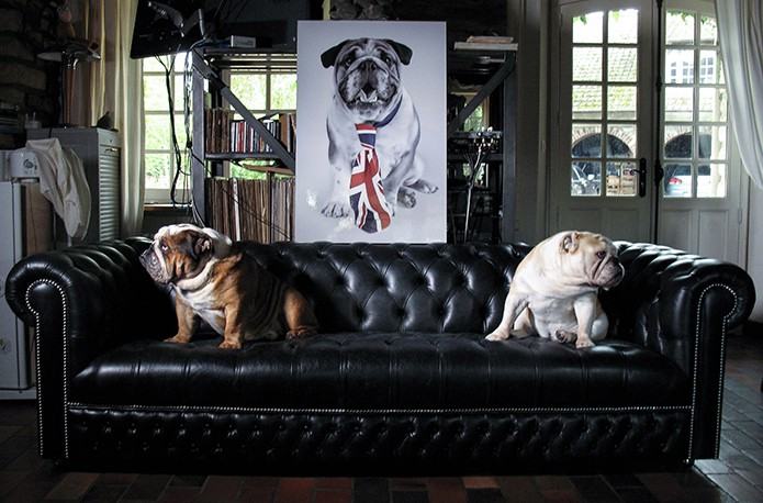chesterfield sofa buy uk extra long sofas with recliners exploring the classic merchant makers and interview by