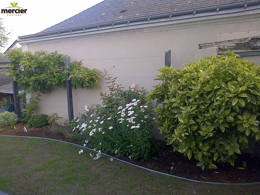 Entretien du jardin mercier paysage paysagiste for Entretien jardin 76