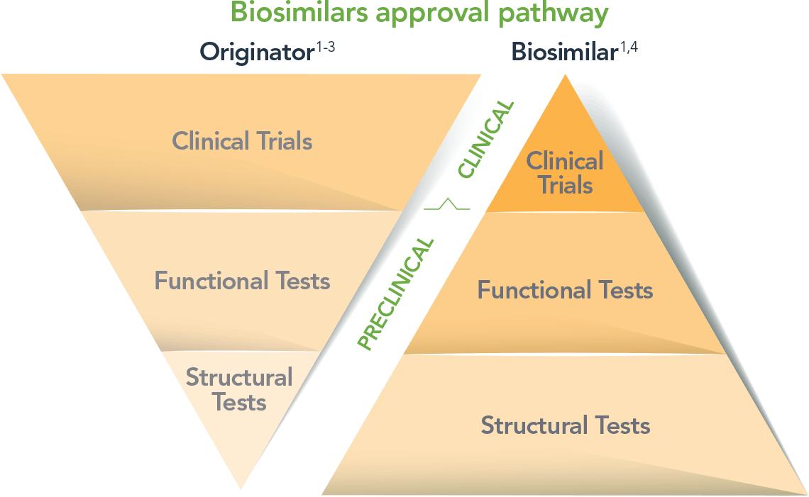 View the Biosimilar Approval Pathway for RENFLEXIS ...