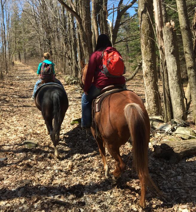 vermont horseback riding