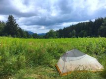 dispersed camping - merck forest