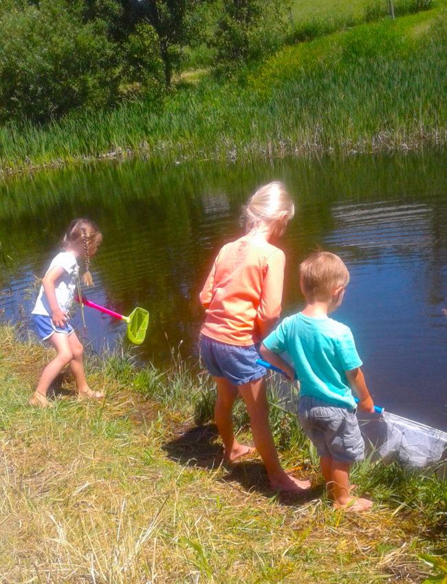 children activities, kids, pond, fun