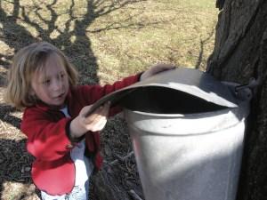 VT kids activities