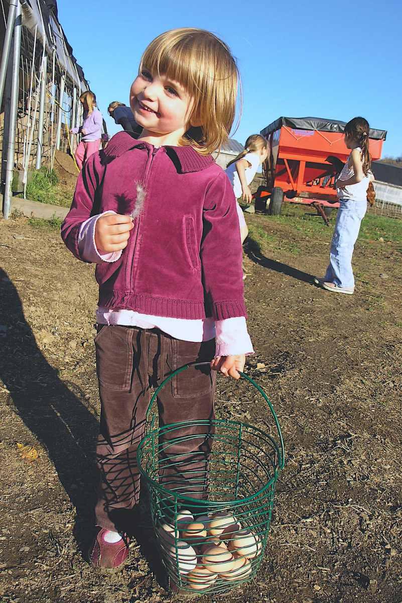 VT chores on the farm