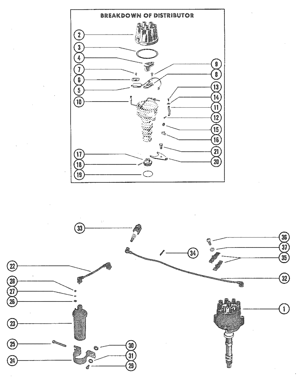 medium resolution of distributor assembly standard ignition