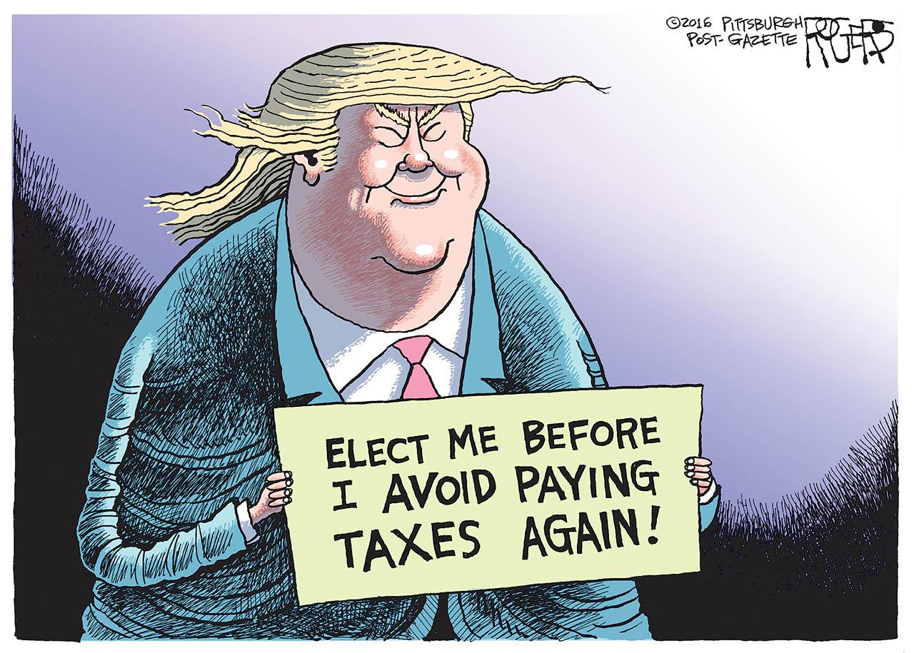 Tax Avoider
