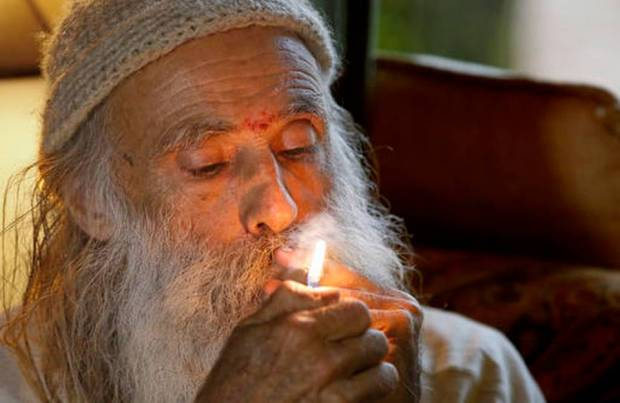 "In this Thursday, Oct. 13, 2016 photo, Swami Chaitanya lights a ""grower's joint"" marijuana cigarette at his home near Laytonville, Calif. Chaitanya and his wife, Nikki Lastreto, who grow their ""Swami's Select"" medical marijuana, support the passage of Proposition 64, the Nov. 8 ballot initiative, which would legalize the recreational use of marijuana. (Rich Pedroncelli AP Photo)"