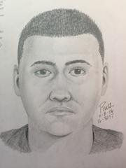 Sunnyvale police released a sketch of a man who is suspected of exposing himself to a girl on Nov. 1.