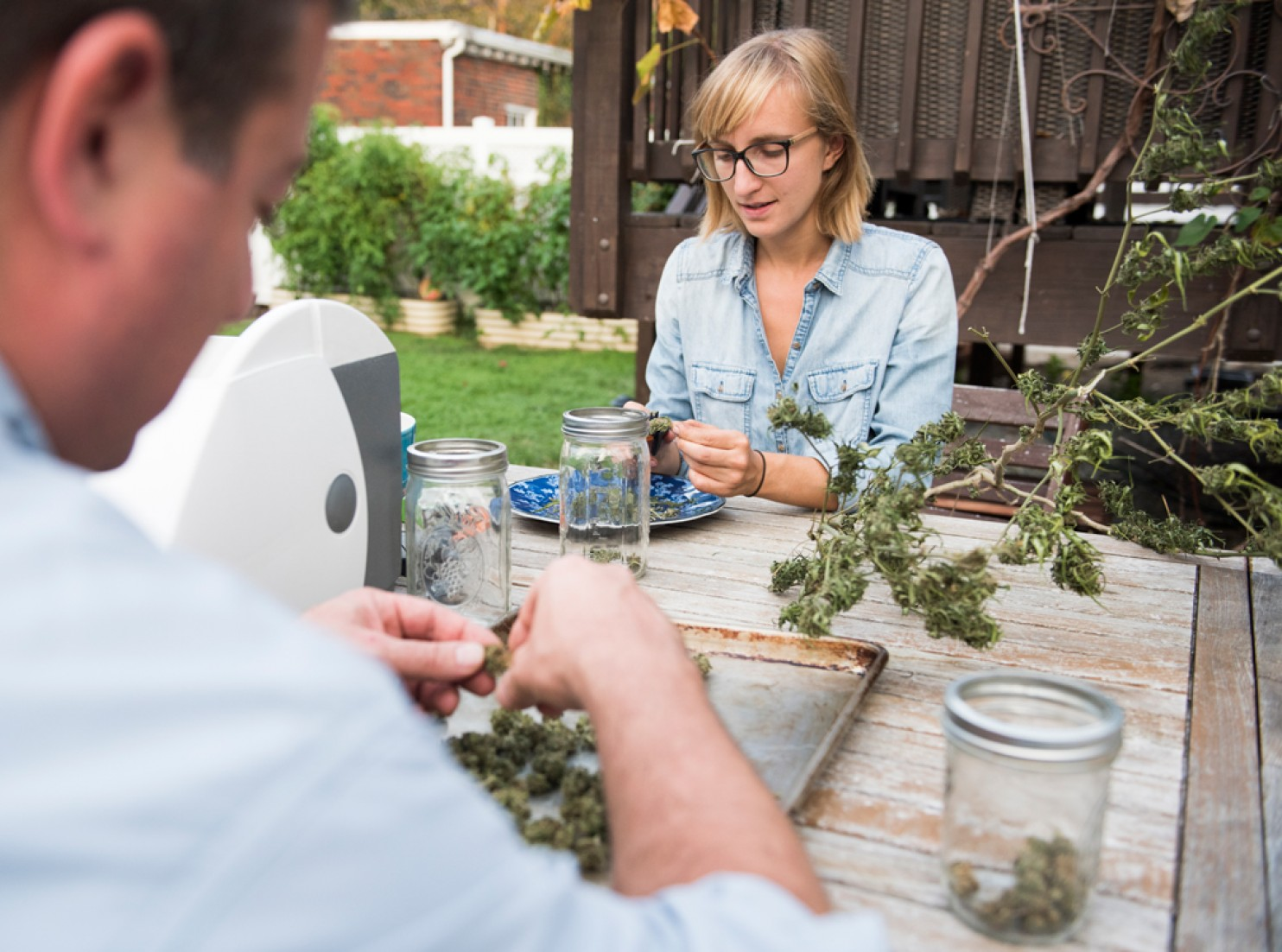 Natalie Carver helps would-be pot growers keep cannabis plants healthy. (Jason Hornick for Express)
